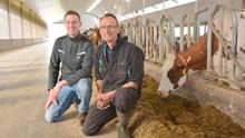 Like father, like son: Ivo Hermanussen runs the 200 pedigree herd of Barendonk Holsteins in partnership with his father Jan near Beers in Holland