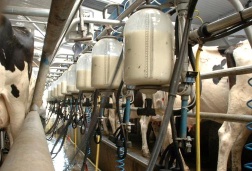 Dairy expansion requires significant capital investment. Stock Image