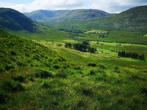 On the market: this 557ac hill farm  at Barnderg, Drummin between Westport and Leenane comes with  entitlements of €24,170 and is guided by Olivia Needham at €695,000. A group of local farmers and a Cork farmer are currently the highest bidders.