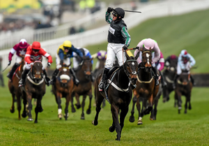 Altior winning at Cheltenham 2016. Photo: SPORTSFILE