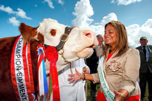 Girls aloud: There is always plenty of glamour on display both inside and outside the showrings at Tullamore show