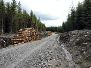 There are top-ups from various capital grants and forestry