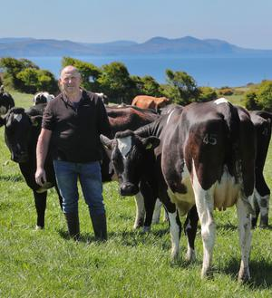 Dingle all the way: Dinny Galvin on his farm on the Dingle Peninsula where he built his herd up from 8,000 to 50,000 gallons
