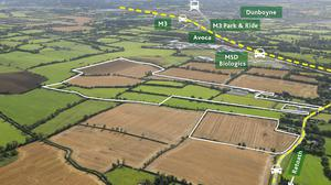 The 104ac farm at Piercetown, Dunboyne is in a mix of tillage and grass