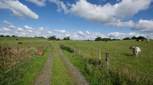 The 80ac farm near Oldcastle in Co Meath is described as ideal for beef or dairy