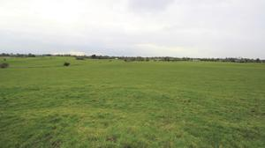 A 55ac parcel of land at Archerstown, Delvin is suitable for cattle only, and has good handling facilities and a water supply