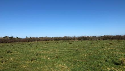 The 53ac of land at Dunamon, Roscommon is laid out in two large fields
