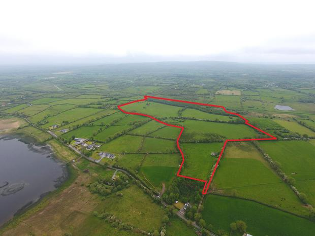 The farm at Oakfield has 50ac in grazing and 17.4ac in forestry