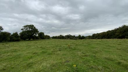 Stock-fattening area: The 30ac non-residential holding at Ballinaskea, Enfield, Co Meath;