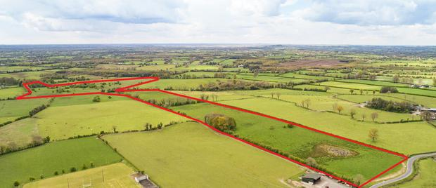 This 39 roadside farm at Edmondstown, Turin, Co. Westmeath will be offered in two lots or as an entire.