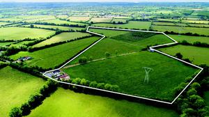 The 31ac farm at Laragh, Maynooth, Co Kildare sold for €650,000 or €21,000/ac, the highest per-acre price in the south Leinster region