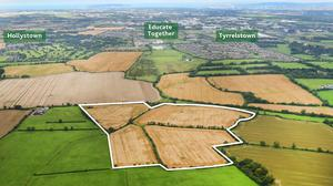 The 48ac parcel of land in Mulhuddart, west Dublin, sold for €1.275m, almost €300,000 above its guide price