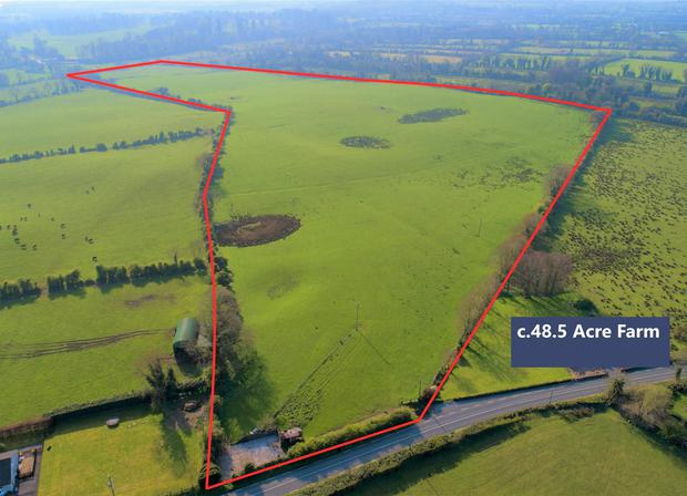 The 48.5ac farm at Mullanakill is laid out in one large, neat division the farm is made up of free-draining elevated lands..