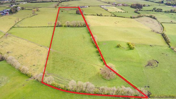 The first lot at Edmondstown has road frontage and extends to 20ac