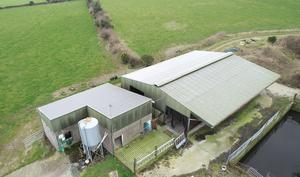 This 113ac dairy farm at Ballintombay, Rathdrum, Co Wickow made over €1m at auction. It came with a range of good miking facilities