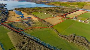 This farm located between Midleton and Whitegate is a mix of tillage, grazing and wetlands