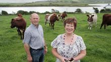 Cool customers: Brid and Roger Fahy of Linnalla Ice Cream with some of their dairy herd on their farm in Co Clare. Photo: Paul Lehane