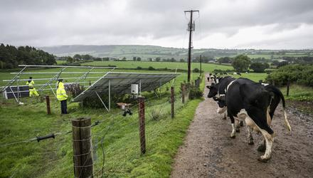 Roll-out: Double-sided solar panels being installed on a farm in Co Kilkenny. Photo: Kyran O'Brien