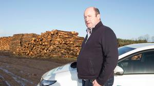 Looking for answers: Padraig Egan, general manager of Axe Forestry in Roscommon. Photo: Brian Farrell