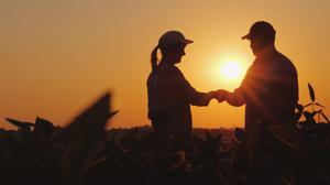 Forward planning: Married couples should look at the possibility of maximising future reliefs available by recognising their farming partnership with the Revenue Commissioners and the Department of Social Protection early on in the business lifecycle.