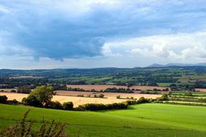The average family farm income (FFI) will increase by 3pc to €25,600 this year, says Teagasc