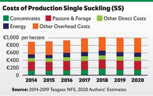 While production costs for sucklers farmers and beef finishers are forecast to increase by 2-2.5pc, these will be offset by a 4pc improvement in cattle prices.