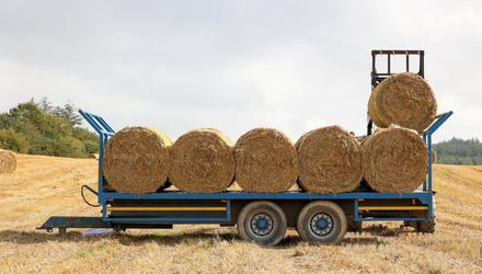 A floor price of €20/bale (4x4) is emerging for barley straw in mixed livestock and tillage area. Stock image