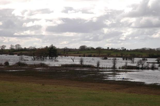 Government has proposed thousands of acres of farmland be rewetted in its Climate Action plans.