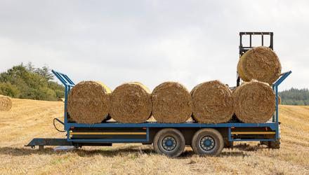 Straw being loaded at Ballyroan, Co. Laois by Jack O'Meara, Saturday 19 September 2020. Photo: Alf Harvey