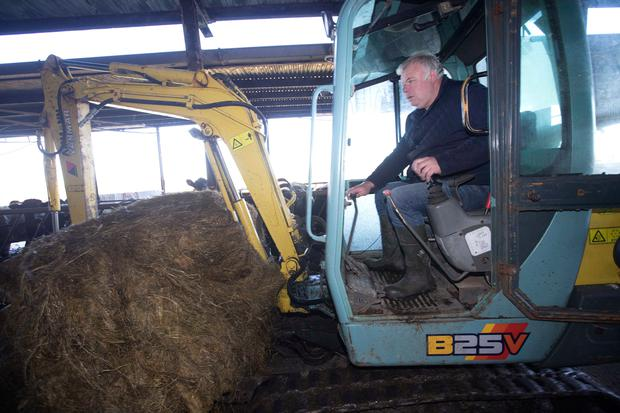 Deputy Michael Fitzmaurice pictured feeding stock in his sheds. Photo Brian Farrell