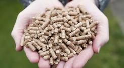 The RHI was designed to encourage businesses and farmers to switch to eco-friendly wood pellet boilers (Niall Carson/PA)