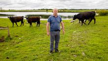 Uncertain future: Angus suckler farmer Pat Daly on his land outside Clonmacnoise, Co Offaly which is threatened by flooding from a rising water level in the river Shannon. Photo: Jeff Harvey