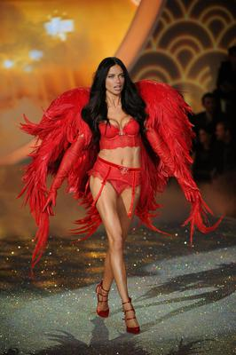Adriana Lima walks the runway at the 2013 Victorias Secret Fashion Show