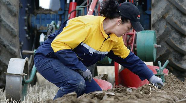 Anna-Marie McHugh from Laois checks the furrow during the Farmerette Conventional Plough class, at the National Ploughing Championships at Cardenton, near Athy