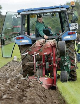 John Whelan from Wexford pictured during the Denlor Reversable Plough Class at the National Ploughing Championships last year