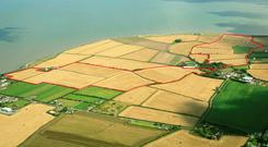 Tillage farm located on the shores of the Irish Sea at Salterstown, Co Louth
