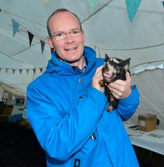 Agriculture Minister Simon Coveney meets Spotty the Kunekune pig at the Irish Pig Society stand