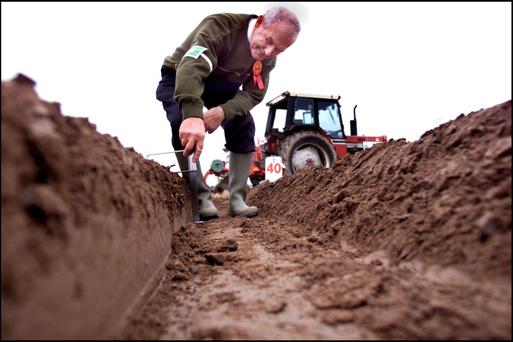 'Depth steward' Harry Gunning from Offaly measures the depth of the ploughing in Ballacolla, Co Laois