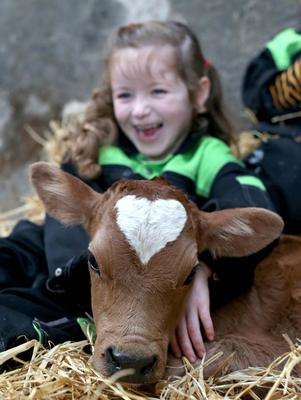 Emily McAuley from Bushmills with the calf born yesterday