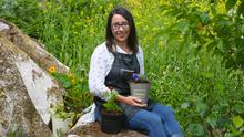 Denise Rocks among the herbs and edible flowers at her organic garden in Spiddal, Co. Galway. Photo: Hany Marzouk