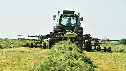 Drying: Tom Staunton's silage crop was shaken out after cutting and left to dry for a day and a half, then baled up. Photo: Roger Jones