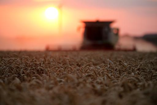 FILE PHOTO: A French farmer harvests wheat, during sunset, in Bourlon, France July 19, 2018. REUTERS/Pascal Rossignol/File Photo