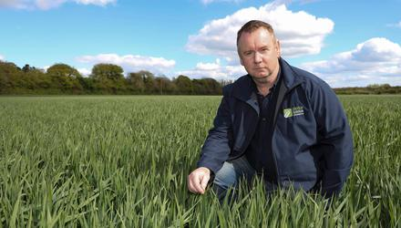 Grain grower Bobby Miller pictured with his Isabel winter oats at Vicarstown, Co Laois. Photo: Alf Harvey