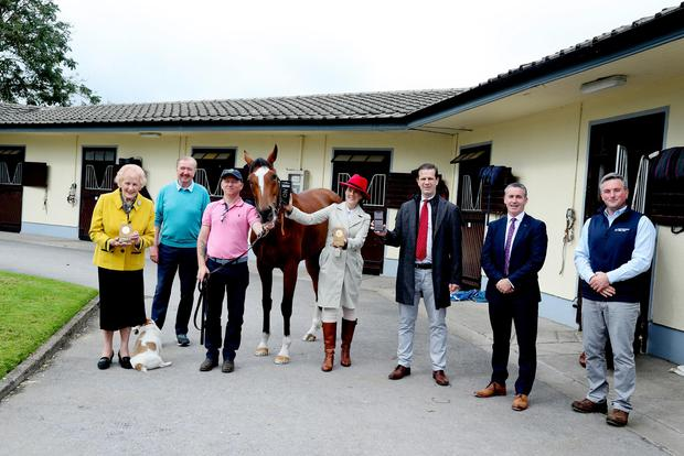 At horse trainer Dermot Weld's stables in the Curragh, Co Kildare, are (from left) Anna May McHugh, MD, National Ploughing Association; Dermot Weld; Tom Daly, headman; Jennifer Corley, CEO, EquiTrace; Kevin Corley, co-founder, EquiTrace; Damien English, Minister of State for Business;, Employment and Retail; and James Maloney, Senior Regional Development Executive, Enterprise Ireland. Picture by Maxwells