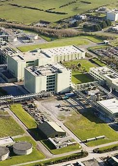 An aerial view of the Novartis facility in Ringaskiddy