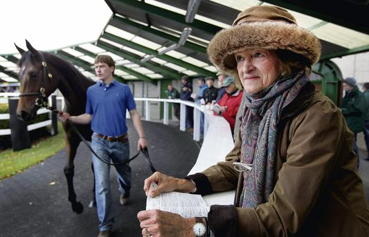 The Orby sale was the financial highlight at Goffs last year.