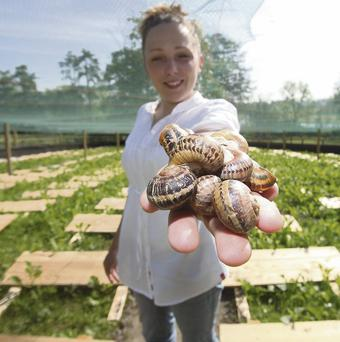 FREE RANGE: Eva Milka of Gaelic Escargot. Photo: Photocall