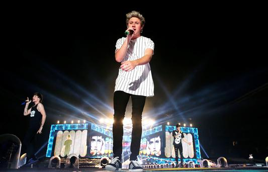 Niall Horan - would his presidential candidature be any more daft than previous celebrity suggestions?