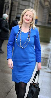 Aine Collins, Fine Gael deputy for Cork North-West at Leinster House yesterday. Photo: Tom Burke