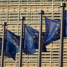 The EU is expected to present a proposal enabling the free flow of data across the bloc later this year. Photo: Bloomberg